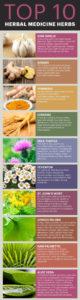 Top 10 Medicinal Herbs